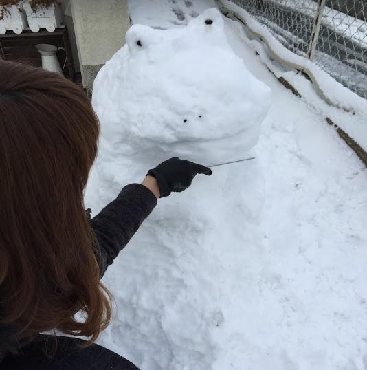雪2016015