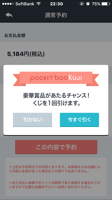 ポケットブッくじ1