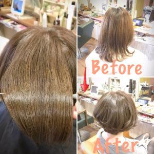 イルミナ&アルピジョンで手に入れたツヤ髪をヘアケアでキープ